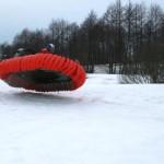 poduszkowce zima 2